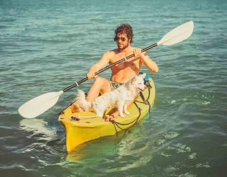 Key West Dog Friendly