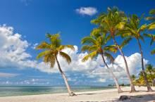 A beach on Key West